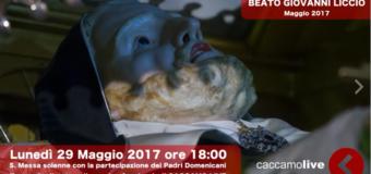 Immagini dei festeggiamenti a cura di Caccamo Live